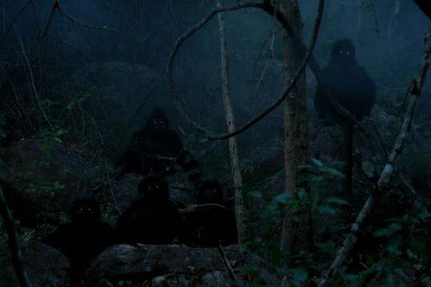 creepy monkeys